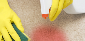 Spot cleaning carpets